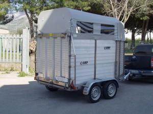 Carrelli trasporto bestiame in vendita dispositivo for Vendita carassi vivi